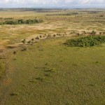 overflight_three_iwokrama_rupununi_415